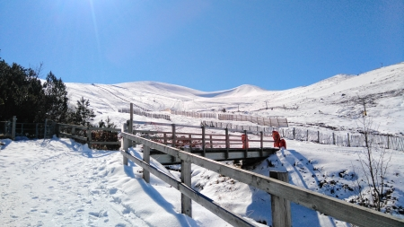 Uplands such as the Cairngorms have enormous potential